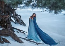 A mysterious wanderer in a luxurious dress and a blue cloak that flutters in the wind. On the background of a frozen. River near the forest, old pocked pines royalty free stock images