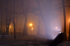 Mysterious winter atmosphere in night park. Winter night in city park lit by orange halogen street posts. White light of the lamp illuminates tiny frozen water royalty free stock photography