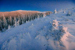 Mysterious winter landscape majestic mountains in . Magical snow covered tree. In anticipation of the holiday. Dramatic Stock Image