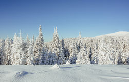 Mysterious winter landscape majestic mountains Stock Image