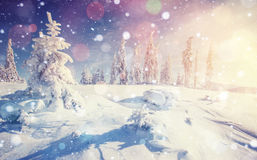 Mysterious winter landscape majestic mountains Royalty Free Stock Photos