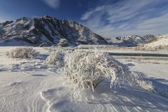 Mysterious winter landscape majestic mountains in winter. Magical winter snow covered tree Stock Photography
