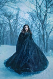 Mysterious woman in black. Dress walking in winter forest Stock Photography
