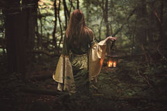 Mysterious woman in fairy forest Stock Photos