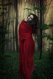 Mysterious woman in forest. Book cover Royalty Free Stock Images