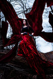 Mysterious woman or witch in long red dress standing in dark forest with flying fabric Royalty Free Stock Images