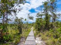Malaysia - Pathway to Heaven stock photo