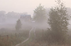 Mystery autumn road with fog in the morning background Stock Image