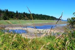 Mystery Bay, Marrowstone island. Olympic Peninsula. Washington State. Marsh land with sal water and northwest wild flowers Stock Photos