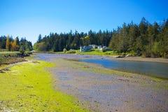 Mystery Bay, Marrowstone island. Olympic Peninsula. Washington State. Stock Photos