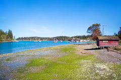 Mystery Bay, Marrowstone island. Olympic Peninsula. Washington State. Royalty Free Stock Photo