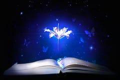 Magic book. wallpaper Royalty Free Stock Photos
