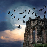 Mystery castle Royalty Free Stock Images