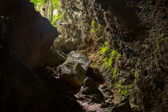 Mystery cave entrance with rocks, mist, green trees Stock Photos