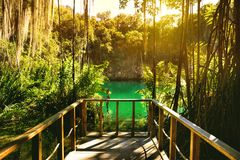 Mystery cave in the jungle, with sun rays  and wooden bridge in. The underground lake. Instagram fiter applied Stock Image