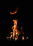 Mystery fire. A flame of fire at night Royalty Free Stock Photos