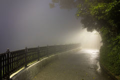 Free Mystery Fog In The Dark Park With Way To Light Royalty Free Stock Images - 75788759