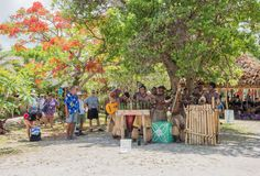 Mystery Island Music Group. MYSTERY ISLAND, VANUATU, PACIFIC ISLANDS: DECEMBER 2,2016: Locals performing music with rustic instruments, spectators, and lush Royalty Free Stock Photography