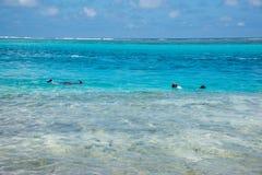Snorkelling Mystery Island, Vanuatu stock photos