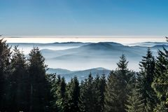 Mystery mountains in the winter. Mist behind trees Royalty Free Stock Photos