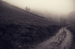 The mystery out of mist. Sacelului Mount. Down to the village Sacel through the mist that covered the top trail of the Sacelului Mountain, located in Cluj county Royalty Free Stock Photo