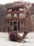 Mystery Petra. Camels in front of Treasury Petra Jordan, old photo effect