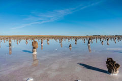 Mystery salt lake Royalty Free Stock Photo
