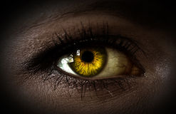 Mystery woman eye. Mystery yellow woman eye closeup Stock Photos