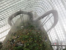 Mystic Cloud Forest Royalty Free Stock Photography