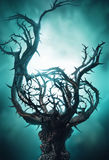 Mystic dark tree with thorns in green fog Royalty Free Stock Images