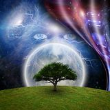 Mystic face. Before full moon, green tree and warped space. Some elements image credit NASA. Human elements were created with 3D software and are not from any vector illustration