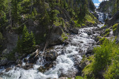 Mystic Falls Yellowstone National Park Stock Photos