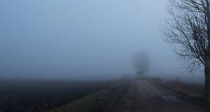 Mystic fantasy scene a foggy day Royalty Free Stock Photo
