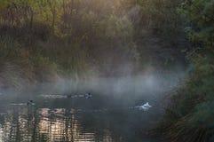 Mystic lake stock images