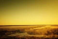Mystic landscape Stock Image
