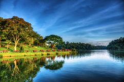 Into The Mystic. MacRitchie Reservoir Park at sunrise Stock Photos
