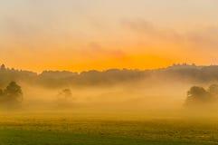 Mystic morning. Mystic foggy sunrise over beautiful danish meadow Royalty Free Stock Image