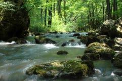 Mystic river landscape Stock Image