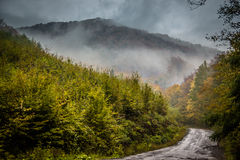 Mystic road in the mountains stock photography