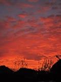 Mystic sunset Royalty Free Stock Photo