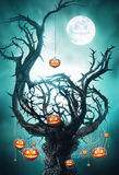 Mystic tree with pumpkins on web Royalty Free Stock Photo