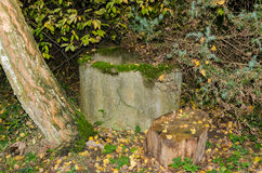 Mystic well in the forest in autumn Stock Image
