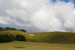 Mystic White Horse on the hill near Avebury. Royalty Free Stock Photos