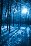 Mystic winter royalty free stock photos