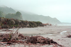 Mystical beach of New Zealand Royalty Free Stock Photo