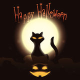 Mystical Black Cat with Happy Pumpkin on Shining Moon, Vector Illustration Stock Photography