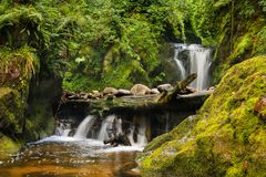 Mystical black forest waterfall spirituell landscapes stock photos