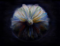 Mystical flower painting Stock Image