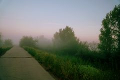 Mystical fog on a country road. Morning or evening Mystical fog on a country road stock photos
