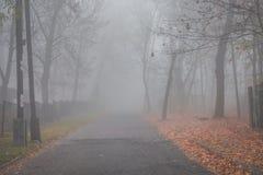 Mystical fog. Mystic autumn morning fog. Road stock photography